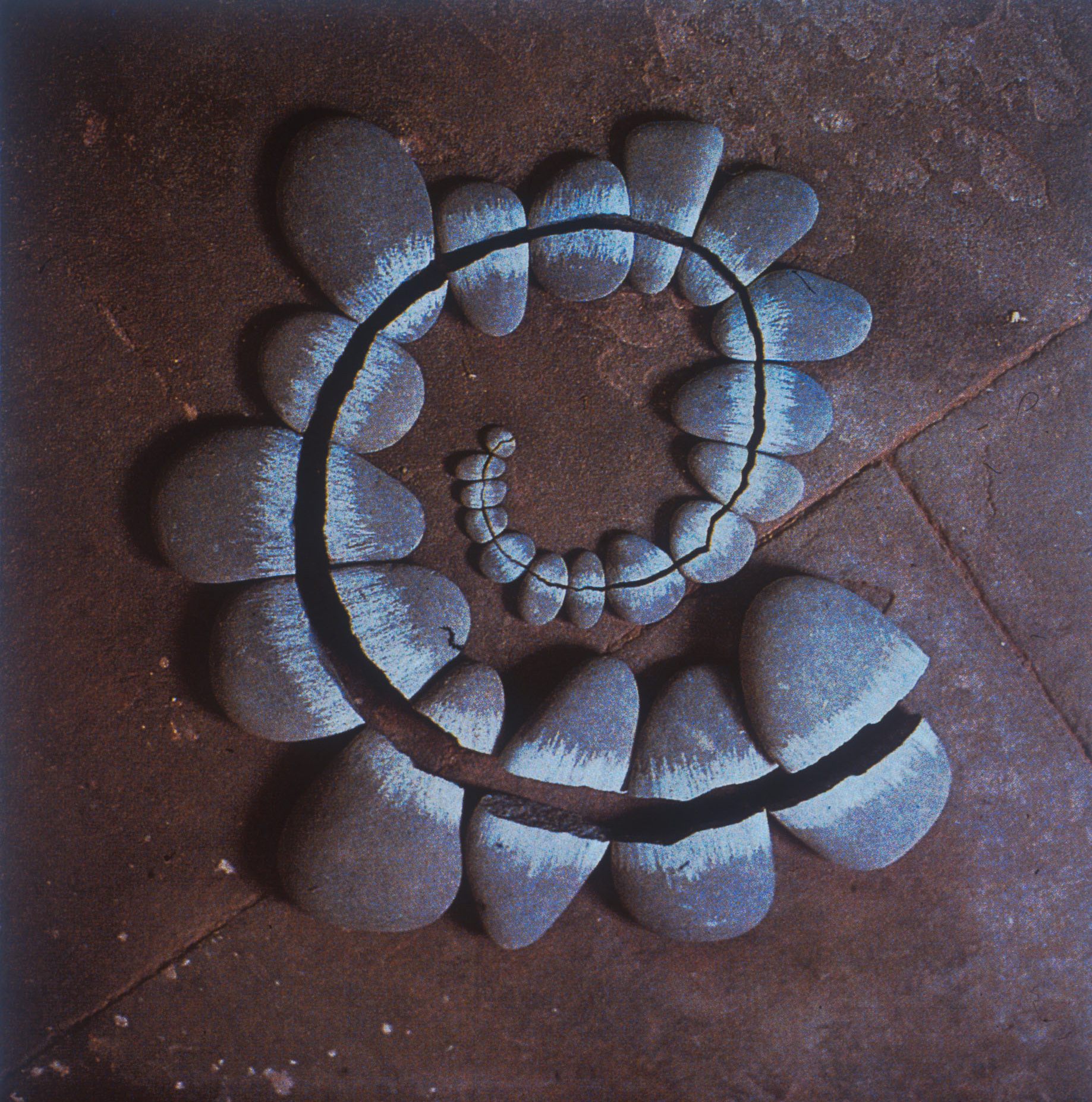 Andy Goldsworthy Working With Time Dop