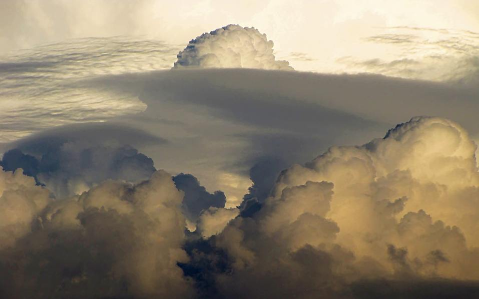 how to join the cloud appreciation society