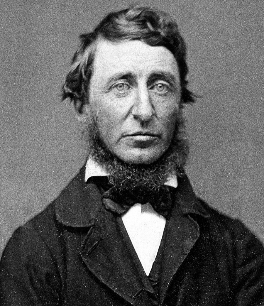 Henry David Thoreau Walden Or Life In The Woods Dop