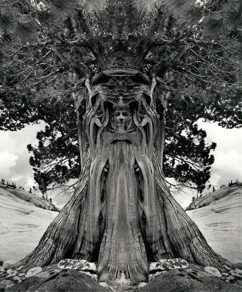 jerry uslemann Introduction jerry n uelsmann (born june 11, 1934) is an american photographer, and was an early exponent of photomontage in the 20th century in america.
