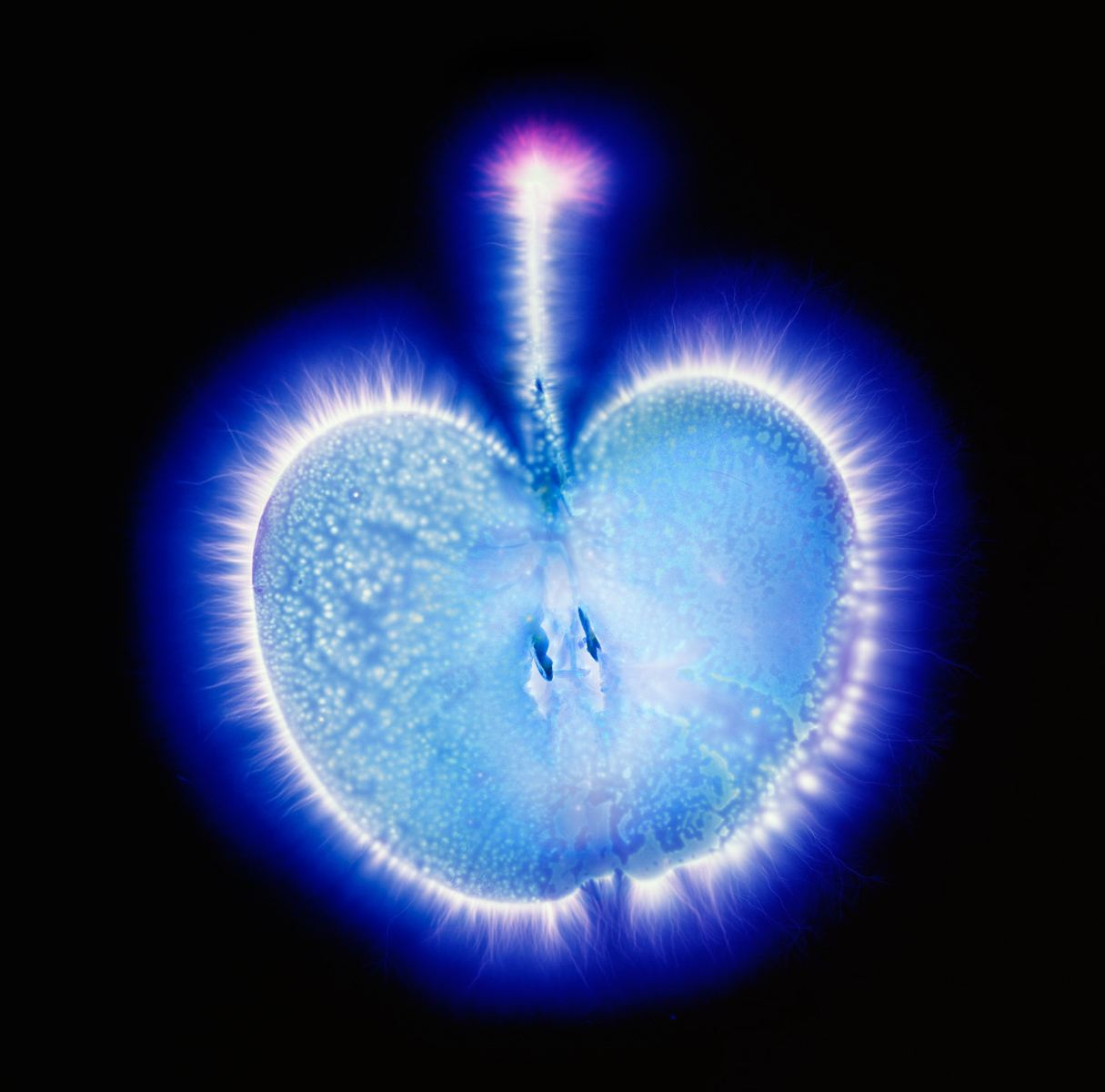 Kirlian Photography The Blaze Of The Force Dop